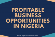 Photo of Business Ideas for a Nigerian