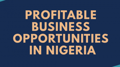Photo of Top Business Ideas in Nigeria