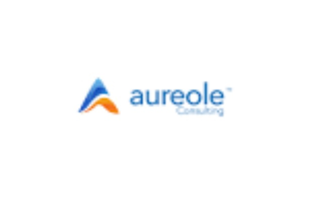 Jobs Vacancy at Aureole Consulting Limited (3 positions Available).  Aureole Consulting Limited is recruiting eligible candidates. Applicants are advised