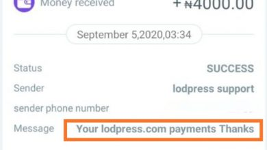 Photo of How To Earn $10 daily (N4000) From Lodpress – Lodpress Review
