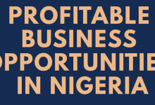 Photo of Profitable Business Opportunity You Can Start With Little Capital
